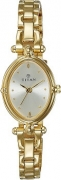 Titan Analog Silver Dial Women's Watch NE2419YM01